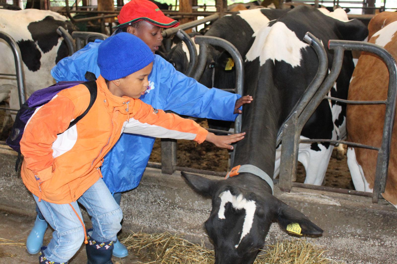 Jugendkulturtage 2016 Bauernhofworkshop